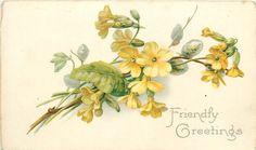 """""""Friendly Greetings"""" yellow primrose and pussy willow by Catherine Klein ~ 1907."""