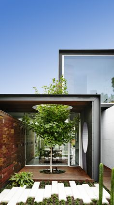 "Galeria de ""AQUELA"" Casa / Austin Maynard Architects - 8"