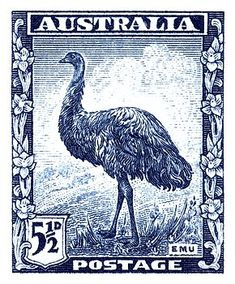 1942 Australia Emu Bird Postage Stamp by Retro Graphics – 2020 World Travel Populler Travel Country Rare Stamps, Old Stamps, Vintage Stamps, Emu Bird, Postage Stamp Design, Australian Birds, Fauna, Mail Art, Stamp Collecting