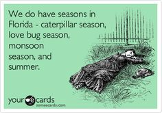 This pretty much sums up Florida gardening #quote