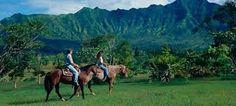 Afbeeldingsresultaat voor kauai