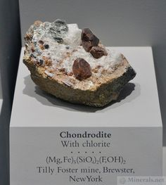 Chondrodite with Chlorite from the Tilly Foster Mine, Brewster, New York