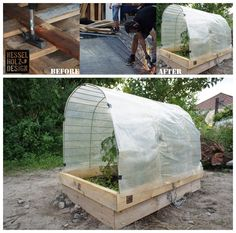 Up-cycled green house with old pallets,