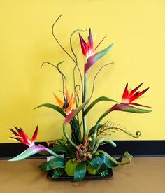 flower arrangement with bird of paradise - Google Search