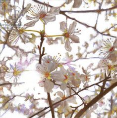 Quintessentially Spring:  Prelude, 2014, (oil on canvas), White, Helen / Private Collection / Bridgeman Images