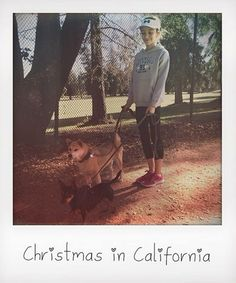 Christmas in California! #Ghannelius #DogWithABlog Tag PhotoAdd LocationEdit