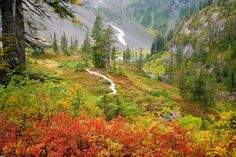 Images of x Mountains Autumn Landscape SC Infp, Looks Kylie Jenner, Cities, Design Digital, Mountain Pictures, Yellow Leaves, Parc National, Pixel, Naturaleza