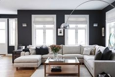 light and dark - I really want to paint my walls that color, but cannot bring myself to have white furniture with two boys and two dogs in the house!