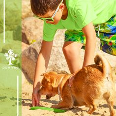 Looking for some ideas for your kids and their dogs to do this summer? Check out our Top 5 FREE list!