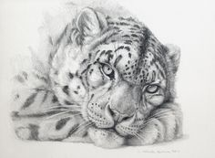 Snow Leopard by sschukina on deviantART