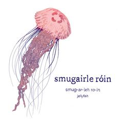 A definite fan favourite the 'smugairle róin' jellyfish! I love this word so much! 'smugairle' comes from 'smuga' meaning snot and a 'rón' is a seal! So in Irish a jellyfish translates as seal snot! I neve Native American Quotes, Native American Symbols, Native American History, Native American Indians, Native Indian, Irish Language, Irish Quotes, Sweet Messages, Writing Inspiration