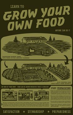 Grow your own food...sustainable gardens