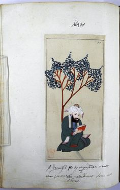 Folio 91b from an album of paintings showing Turkish sultans and court officials. Mevla çunkar. A Mevlevi dervish seated under a tree holding a book. Has a green robe with long sleeve. White turban with a brown cap.