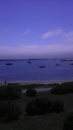 View during lunch at Sam's Chowder House in Half Moon Bay.