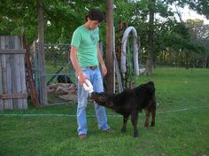 """Quade takes a break from a ball game of """"HORSE"""" to feed Gustoff."""