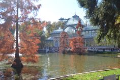Palacio de Cristal.