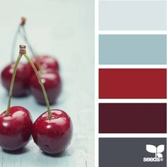 Edible Color | Photo book preview