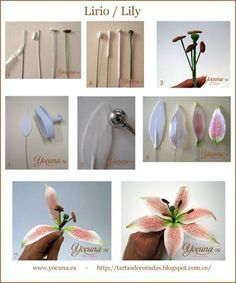 TUTORIAL! How to make gorgeous Gum Paste Lily Flowers... So beautiful! 3 Fabulous how-to Thanks to Yocuna Reposteria Decorada! Full details here (Use Google Translate): http://tartasdecoradas.blogspot.it/2012/07/paso-paso-lirio-tutorial-lily.html