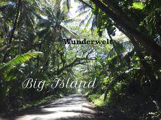 """°Dieser Weg wird für mich unvergesslich bleiben, leider wurde er kurze Zeit nach unserem Aufenthalt, von der Lava """"verschluckt"""". °This path will be unforgettable for me, unfortunately he was """"swallowed"""" by the lava shortly after our stay. Big Island Hawaii, After, Strand, Lava, Small Restaurants, Car Rental, Snorkeling, Travel Report, National Forest"""