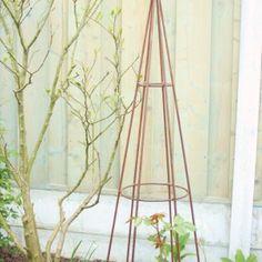 De Tuinfee – JOUW TUIN VERDIENT HET Diy Organisation, Buxus, Clematis, Plant Hanger, Green, Plants, Hobby, Decor, Xmas