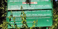 Peraturan yang terdapat di G-Land Alas Purwo, tempat wisata sekaligus tempat para pendatang berselancar. info selengkapnya http://rescaviranana.blogspot.com/