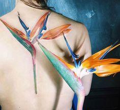 68 Best ideas tiny bird of paradise tattoo Baby Tattoos, Foot Tattoos, Flower Tattoos, Sleeve Tattoos, Tatoos, White Bird Tattoos, Little Bird Tattoos, Tattoo Bird, Bird Of Paradise Tattoo