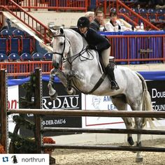 #PNHSRewind We are already looking forward to all of the incredible talent that will be showcased during the 2016 Medal Finals at the 71st #PANational ! Checkout this incredible photo of @mckaylalangmeier and Eclipse from the 2015 show when they received 3rd place! #PNHSJrWeekend #PNHSMedalFinals #71PNHS #70pnhs #Repost @northrun.  McKayla Langmeier and Eclipse were mega today in the USEF Medal Finals and finished in 3rd. Awesome job @mckaylalangmeier! #northrun #keliandafarm #TeamEquiFit…
