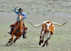 Images from Sombrero Ranch, Colorado USA of Cowboys and horses prir to the Geat American Horse Drive. (C)Michael Huggan Photography