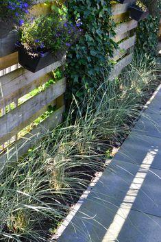 10 siergrassen soorten voor méér rust en eenvoud in de tuin Home And Garden, Flowers, Plants, Inspiration, Gardens, Outdoors, Inspired, City, Patio Design