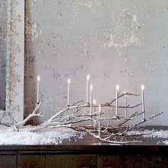 greyish candelabra branch