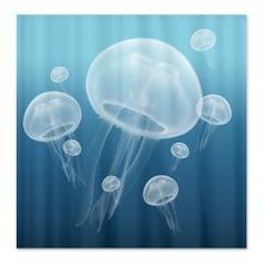 For The Home - Jellyfish Fabric Shower Curtain. Perfect For An Ocean Theme Bathroom