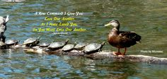 Unity Church of Tidewater  Bible Quote