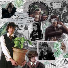 Headcanon Harry Potter, Harry Potter Set, Harry Potter Universal, Harry Potter Characters, Neville Longbottom, Longbottom Harry Potter, Matthew Lewis, Harry Potter Wallpaper, Dream Boy