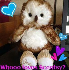 The scentsy buddy owl is too cute!