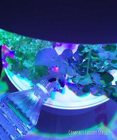 Plantui〜watering〜