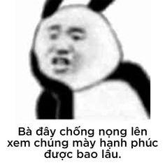 Cute Memes, Funny Memes, Funny Art, Chinese Meme, Panda Meme, Interesting Meme, Contentment Quotes, Teen Dictionary, Response Memes