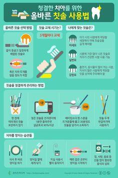 [Korean] 청결한 치아를 위한 올바른 칫솔 사용법 #Infographic #tooth brush