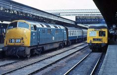 Railway Herald :: Imaging Centre :: 811 at Exeter St Davids