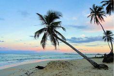 Sunsets are better at Dreams Punta Cana Resort & Spa! #travel #vacation