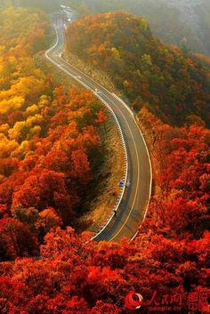 Fall in Northern China