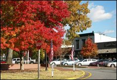 Fall Colors in Dahlonega Georgia on the town square.