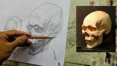 Обучение рисунку. Портрет. 19 серия: рисунок черепа в 2 ракурсах, 1 часть.