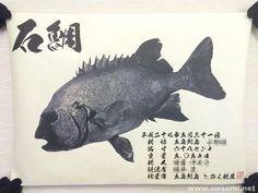 デジタル魚拓サービス 魚墨で作成した石鯛の墨魚拓です。 It is a sumi fish print of a striped beakfish. www.uosumi.net/