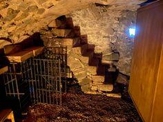 Wine Cellar, Wine Tasting, Wine Recipes, Tuscany, Tours, France, Riddling Rack, Tuscany Italy, Wine Cellar Basement