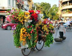 You should have an old bike propped up on the middle landing of the stairs up to the OL all covered in flowers like this! hanoi,city of flowers,vietnam Amazing Flowers, Love Flowers, Fresh Flowers, Flowers For Sale, Flower Cart, Orange Flowers, Pretty Pictures, Flower Designs, Flower Power