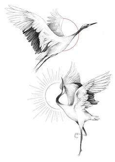 Mini Tattoos, Body Art Tattoos, Small Tattoos, Tattoo Sketches, Tattoo Drawings, Art Sketches, Bird Drawings, Animal Drawings, Fineliner Set