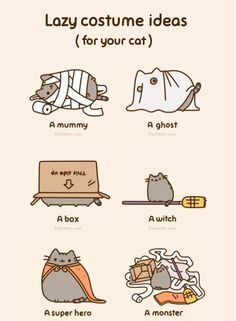 LaSt minute costume ideas ( for your cat )