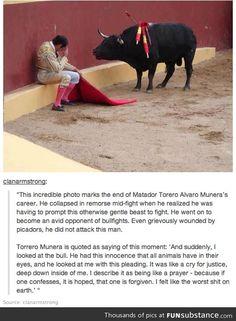 Bullfighting is stupid.