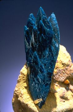 Close-up photograph of veszelyite (148368) from the National Mineral Collection. Photo by Chip Clark.