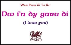 Welsh phrase of the Day
